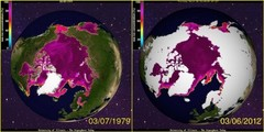 Most polar ice ever recorded